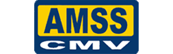 This image has an empty alt attribute; its file name is ams.png